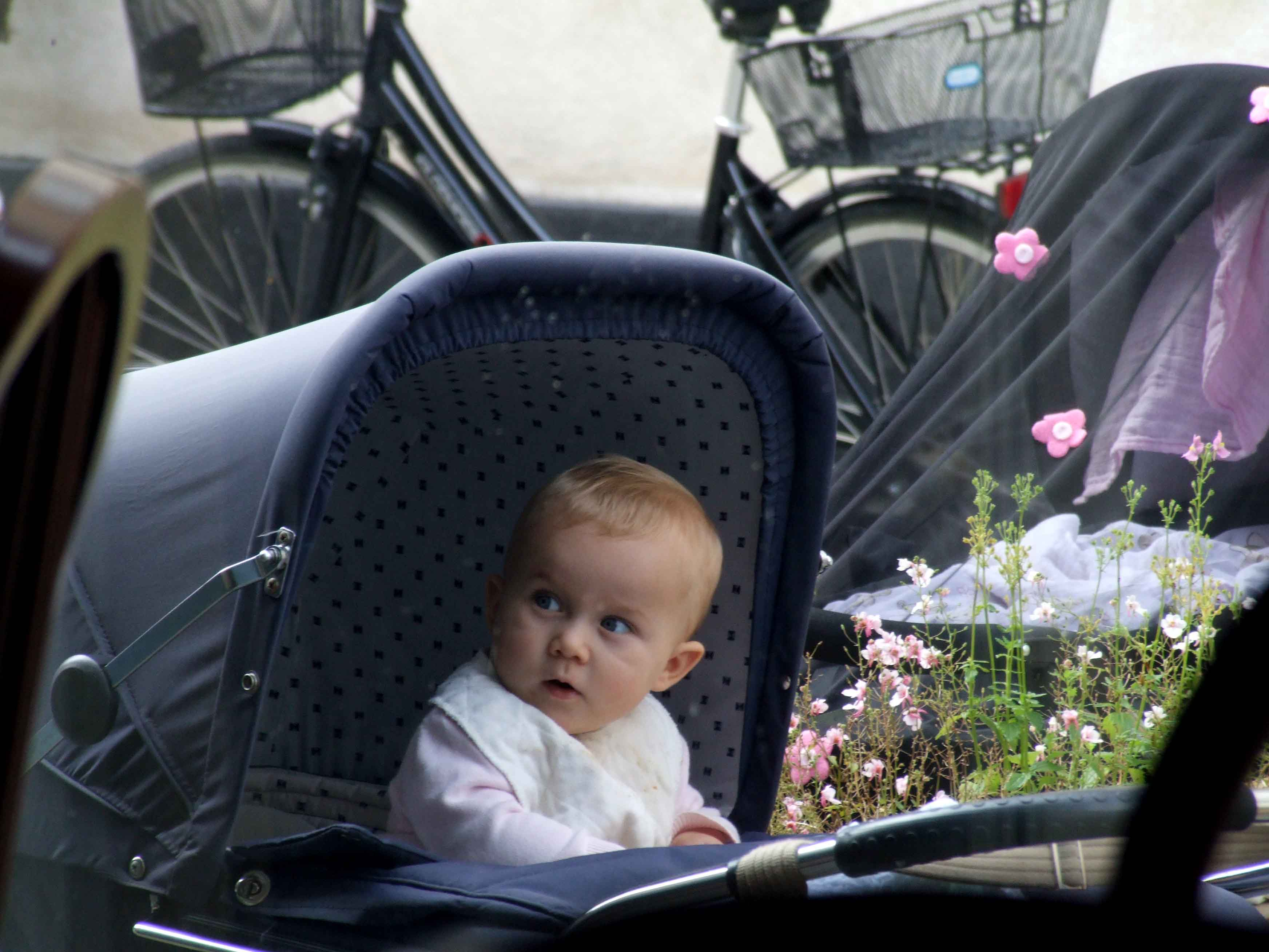 Hungry Eyes for Scandinavian Baby Buggies