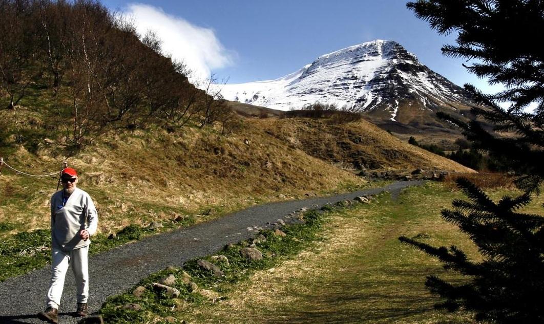 Half of older Icelanders are still working